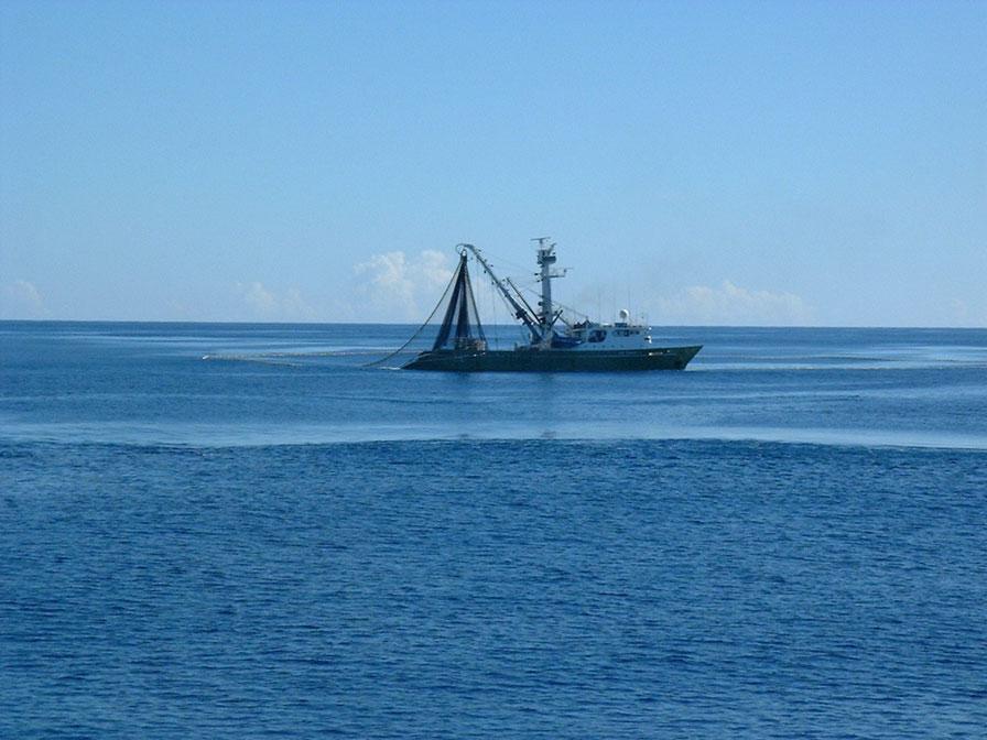 Vietnam Fishing Fleet To Use Iridium Gear