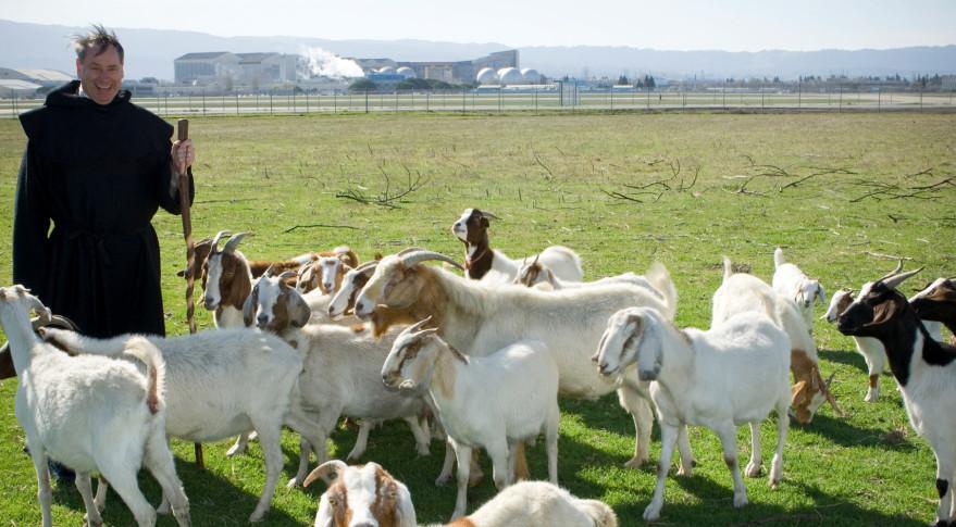 Pete Worden shepherd