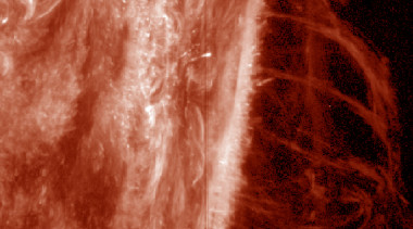 NASA's Interface Region Imaging Spectrograph (IRIS) spacecraft captured this image of several large solar prominences on the edge of the sun. Credit: NASA