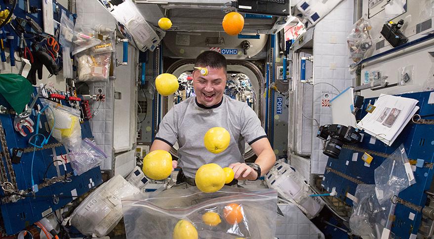 Эксперименты с сексом на орбите
