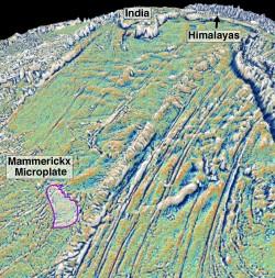 Mammerickx Microplate. Credit: NASA