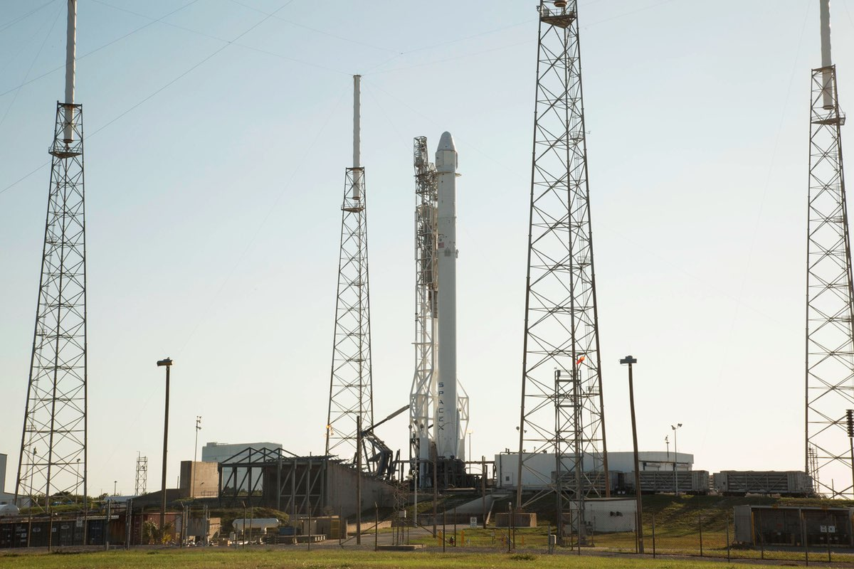 falcon 9 on the pad