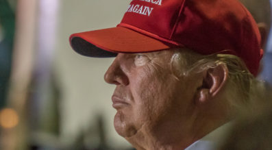 Profile view of Donald J Trump, presidential candidate, at the Boca Raton, FL Rally on March 13th, 2016. Credit: Windover Way Photography / Shutterstock.com