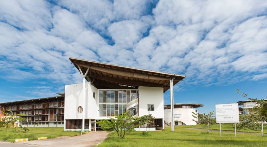 University of French Guiana