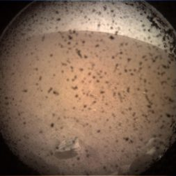 InSight first image